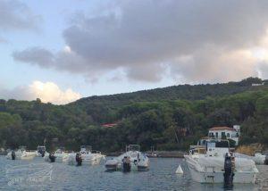 Elba noleggio barche e gommoni Malua